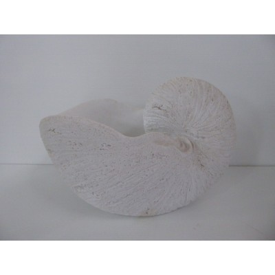 Concha Blanca Gigante Artificial 28 cm